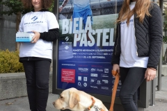 Dobrovoľníci v bratislavských uliciach