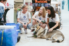 Adela, dobrovoľníčky a pes